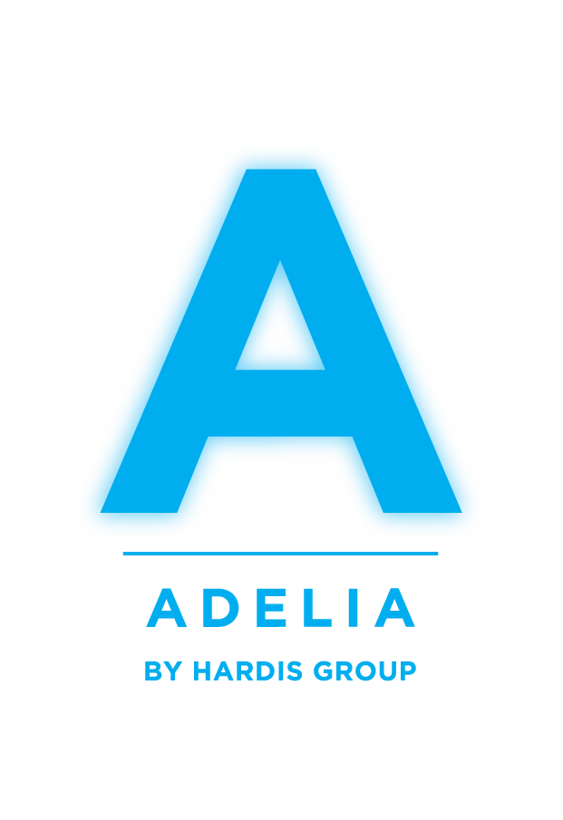 adelia-studio-esn-lille-ssii-grenoble-paris-lyon-nantes-bordeaux-hardis-group