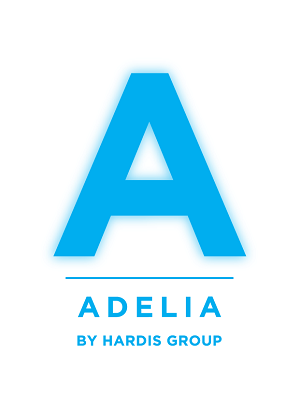 adelia-studio-esn-lille-ssii-grenoble-paris-lyon-nantes-bordeaux-hardis-group